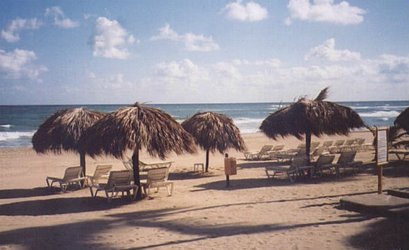 Beach (Excellence Punta Cana)